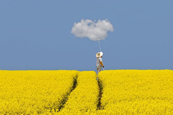 canola sky cloud and a painter jpg