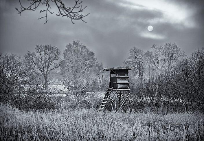 frost jpg