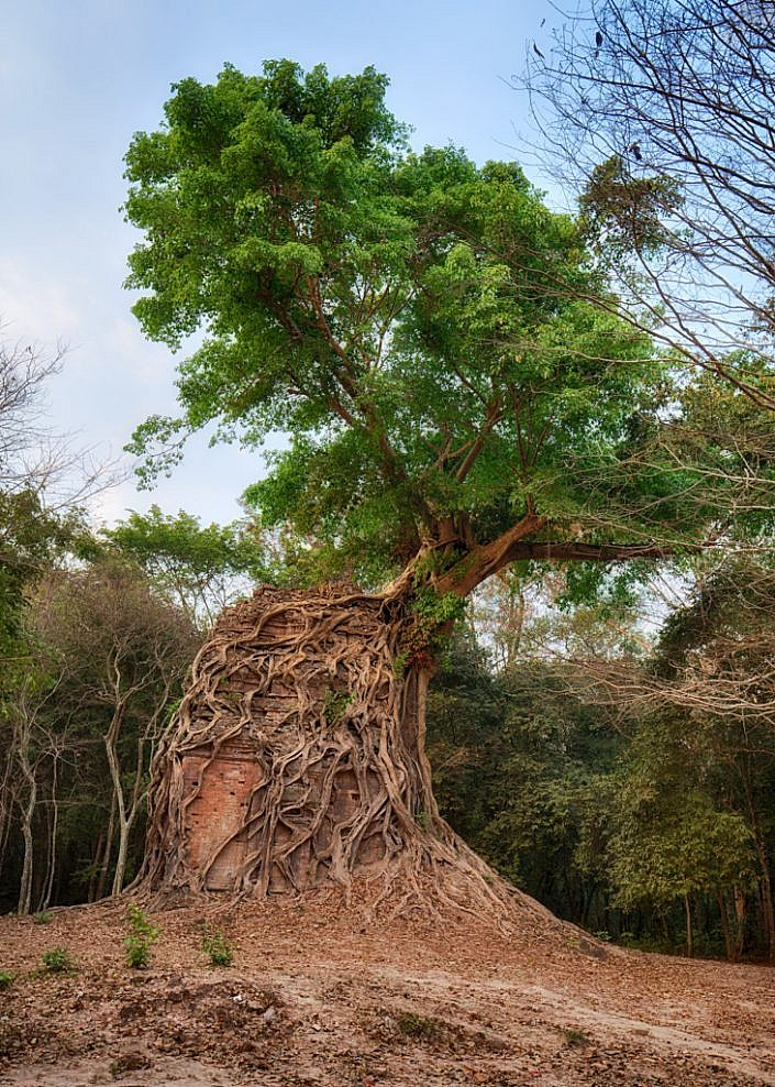 Khmer temple ruin