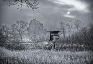 hunter's hide in winter